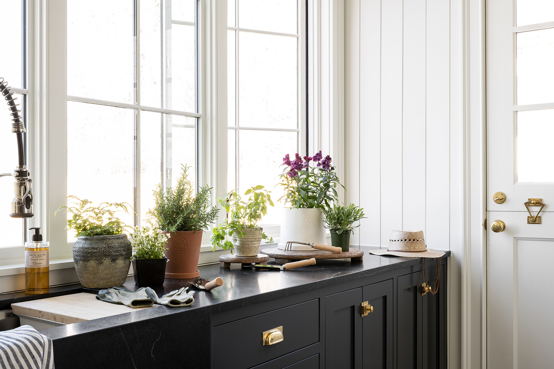 Our Guide To Keeping Indoor Plants Healthy