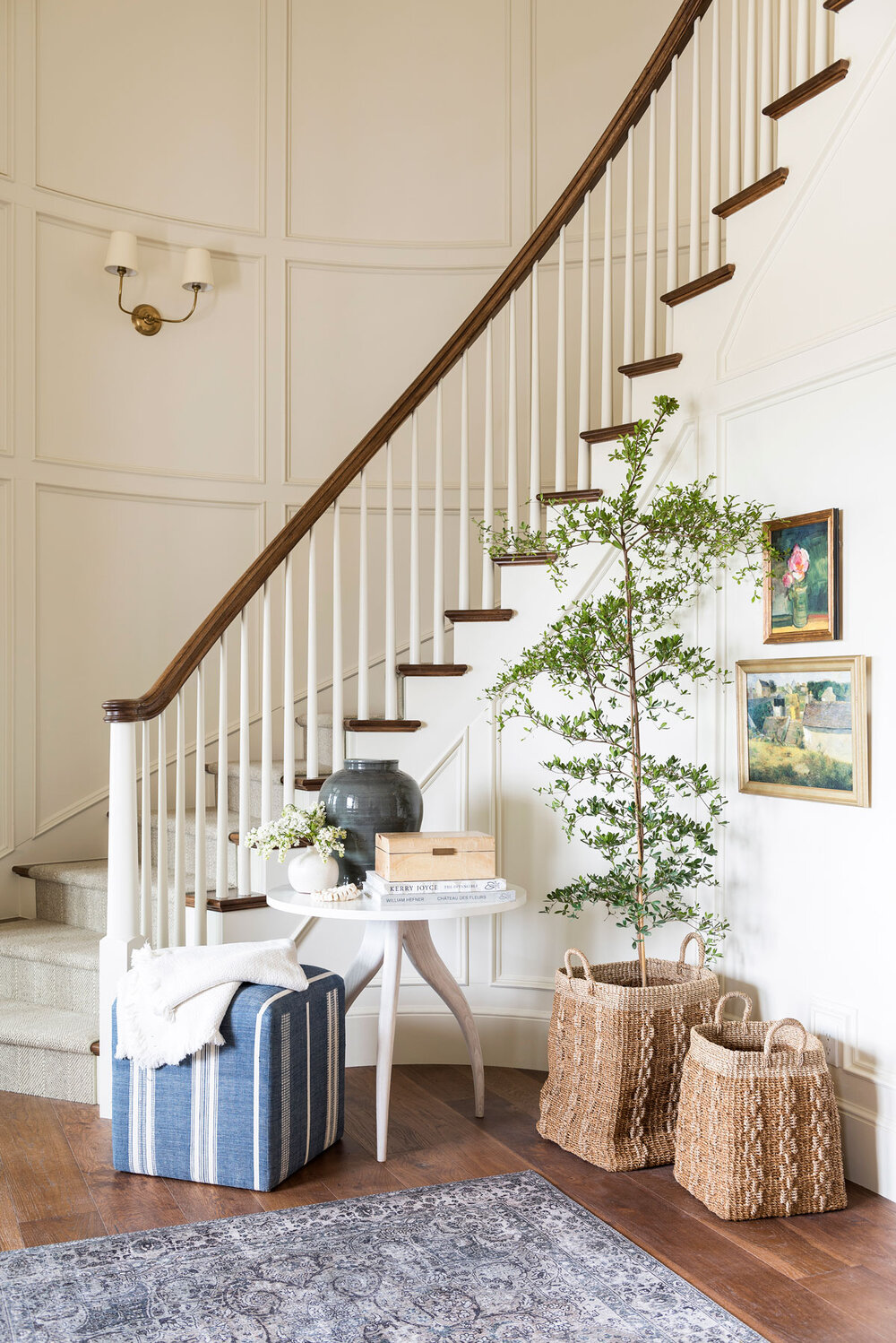 Our Most-Loved Project Plants