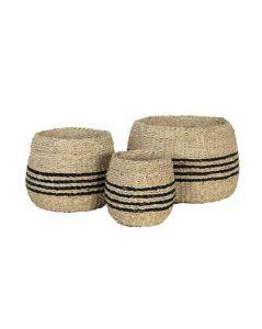 Payne Basket - Set of 3