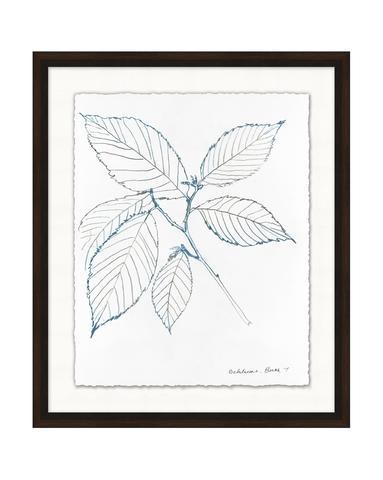 Blue_Leaf_Sketch_2_1_480x480.jpg