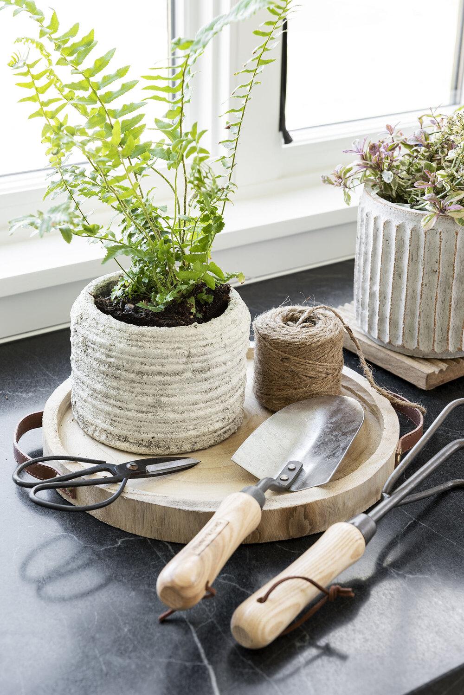 Our Gardening Roundup