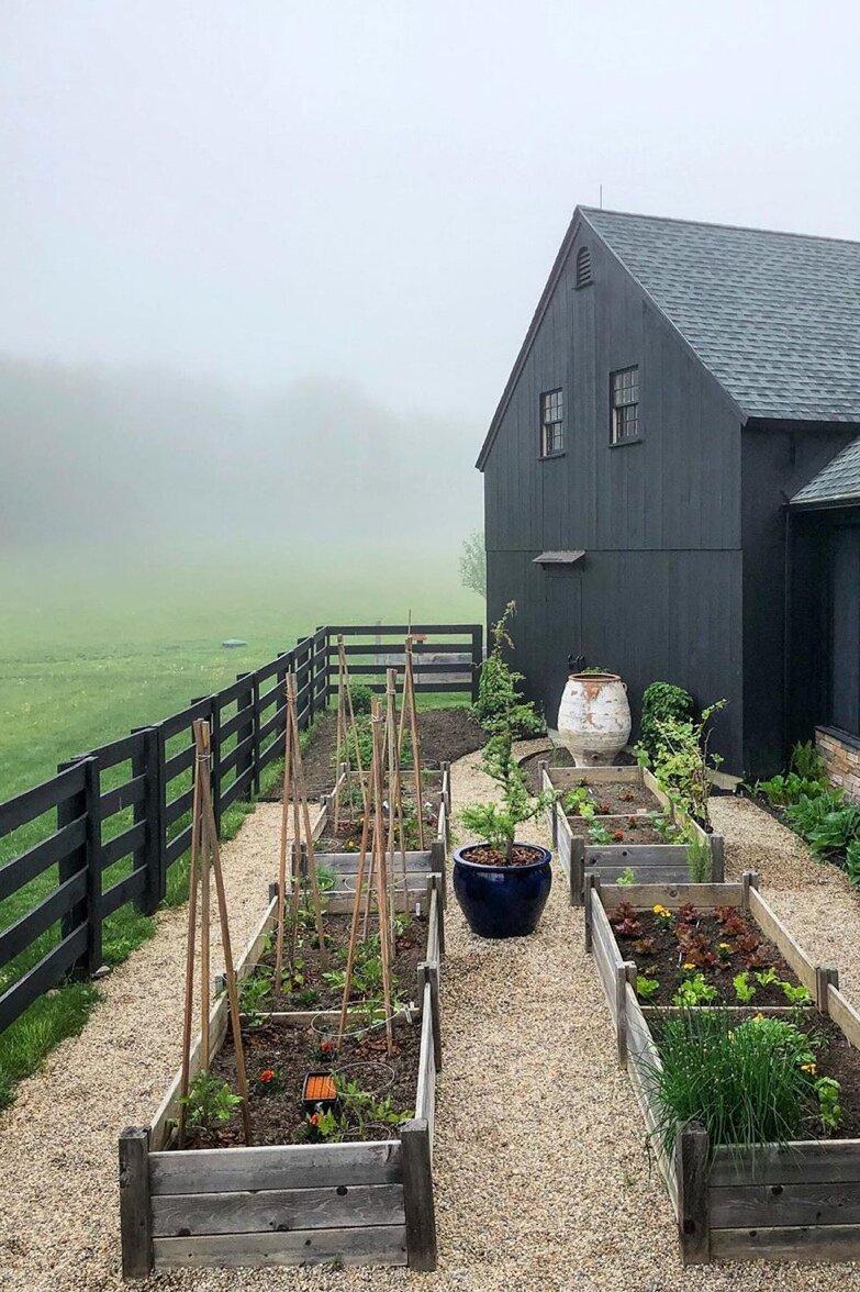 @yolorenzo 's dreamy garden.