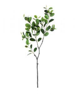 Faux Italian Ficus Branch