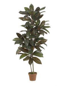 Faux Potted Cordyline Plant