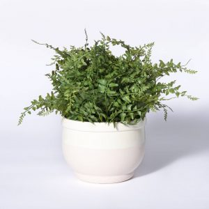 Small Faux Potted Fern