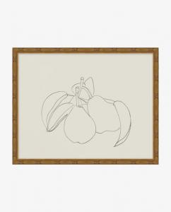 Sketched Fruit III