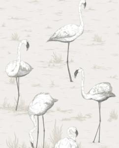 Flamingos Wallpaper