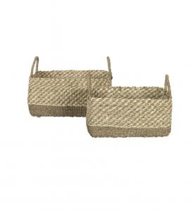 Cordova Basket