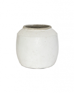 White Lined Pot