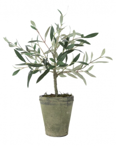 Faux Potted Charleston Olive Tree