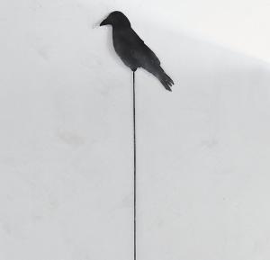 Crow Iron Stem