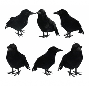 Halloween Black Feathered Crows