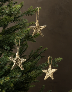 Woven Star Ornament (Set of 40)