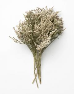 Dried Statice Flowers